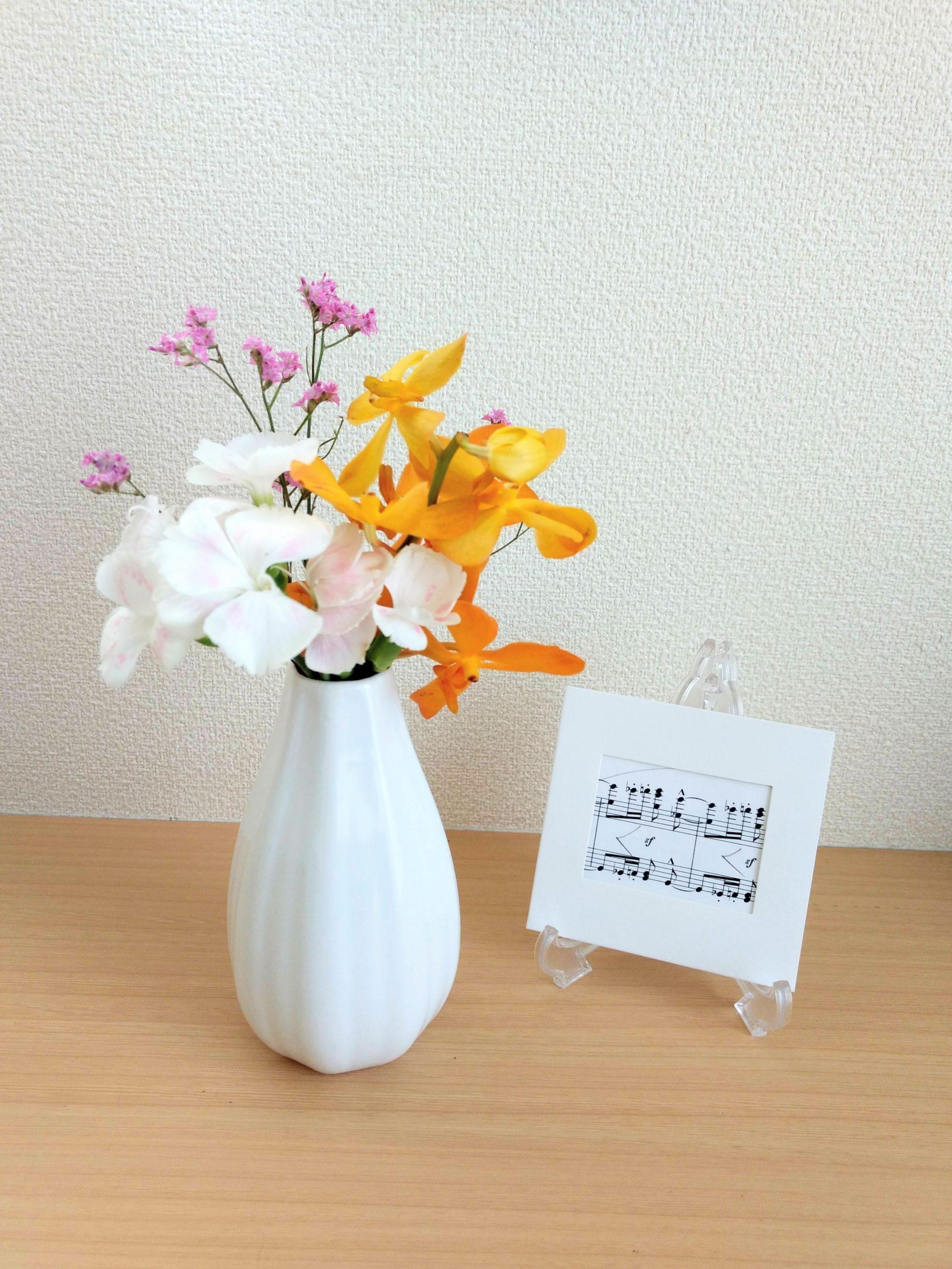 ダイソーの花瓶に飾ったモカラの画像