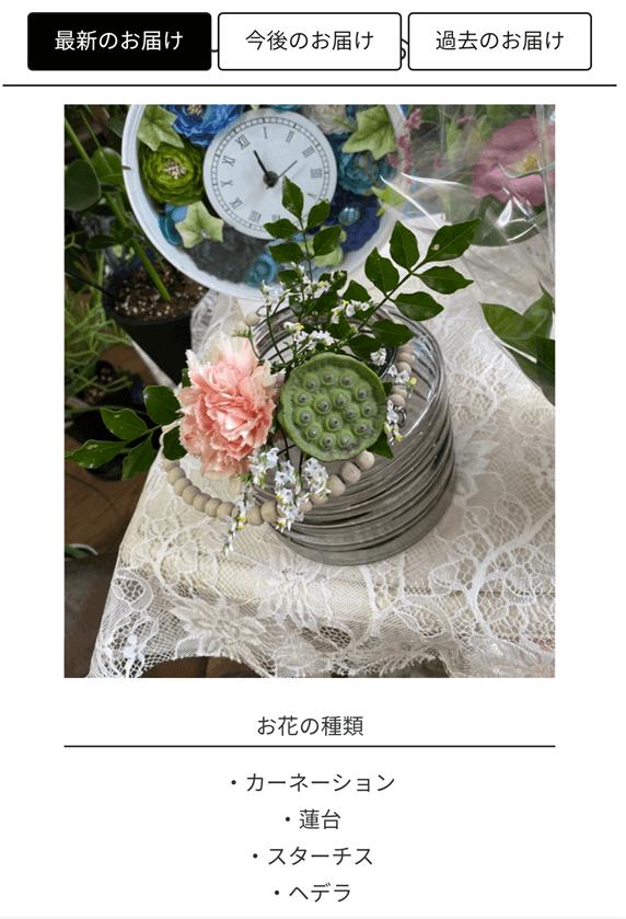ブルーミーライフのマイページで紹介されている今週の花の画像