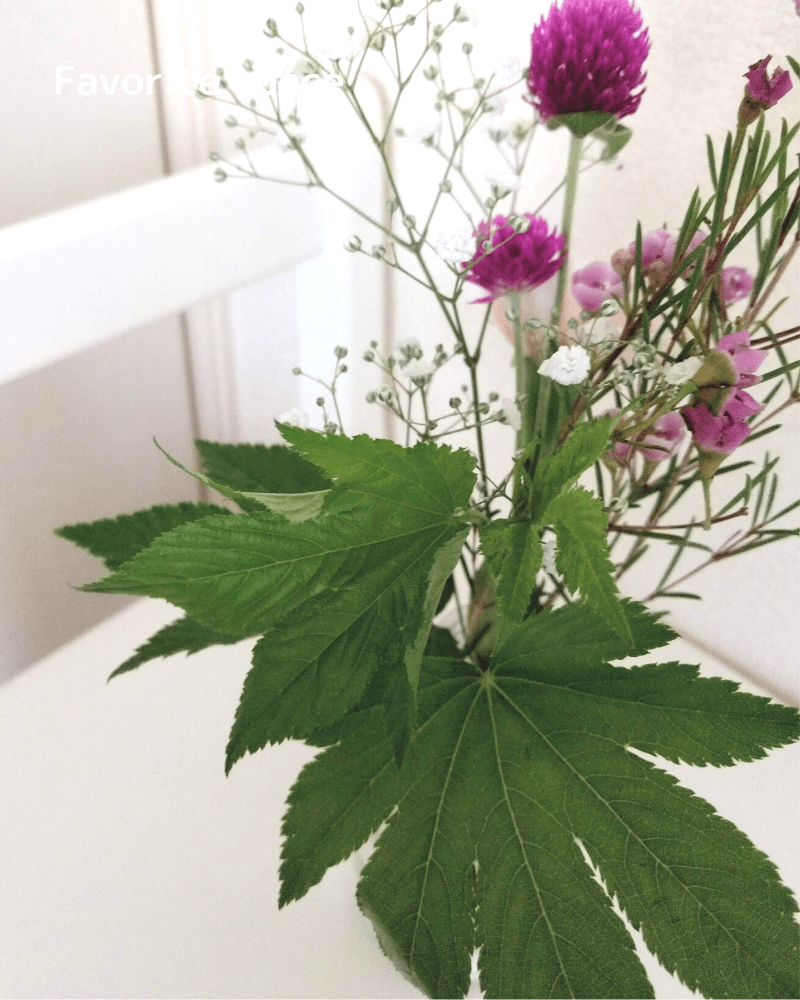 ブルーミーライフから届いた木苺が、少し元気の無い様子の画像